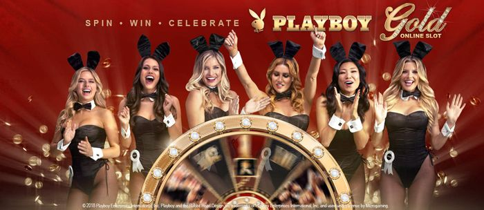 Программа для игры в интернет казино