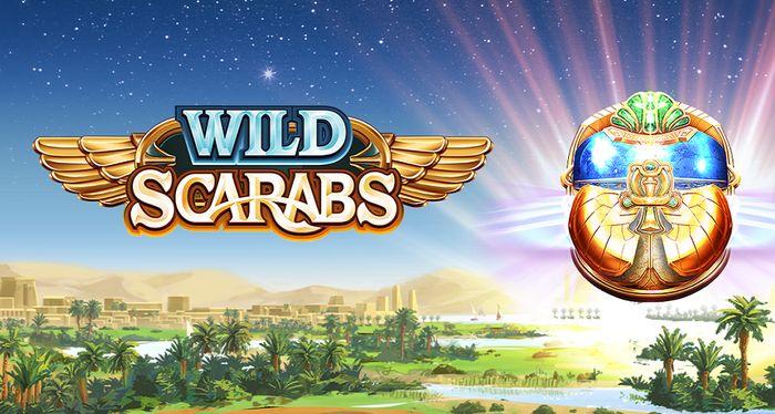 Постер игрового автомата Wild Scarabs от Microgaming
